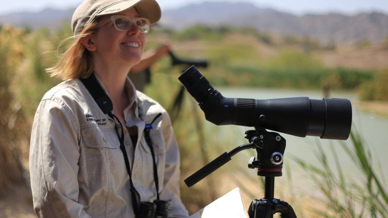 Select An Offbeat Career In Ornithology